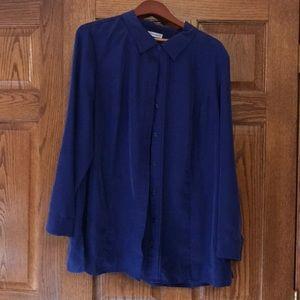 Beautiful silky blue tunic top